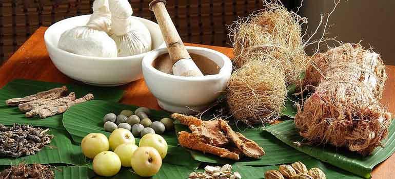 Ayurvedic Medicine: A Brief Feed